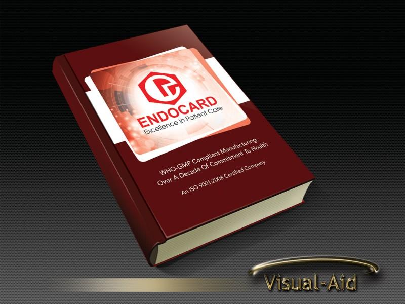 Visual-Aid5